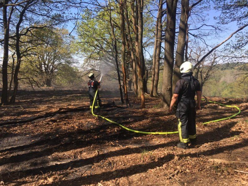 Zwei Mitglieder der Freiwilligen Feuerwehr Mettmann bei Löscharbeiten im Bereich der deutsch-niederländischen Grenze im Kreis Viersen. Foto: Feuerwehr Mettmann