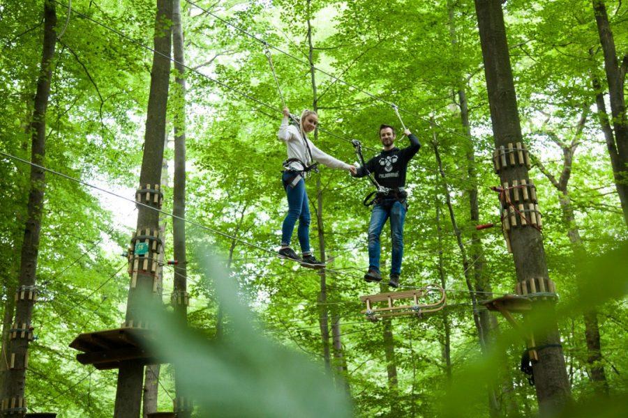 Hoch hinaus geht es im Waldkletterpark in Velbert-Langenberg. Foto: Waldkletterpark VE-Langenberg