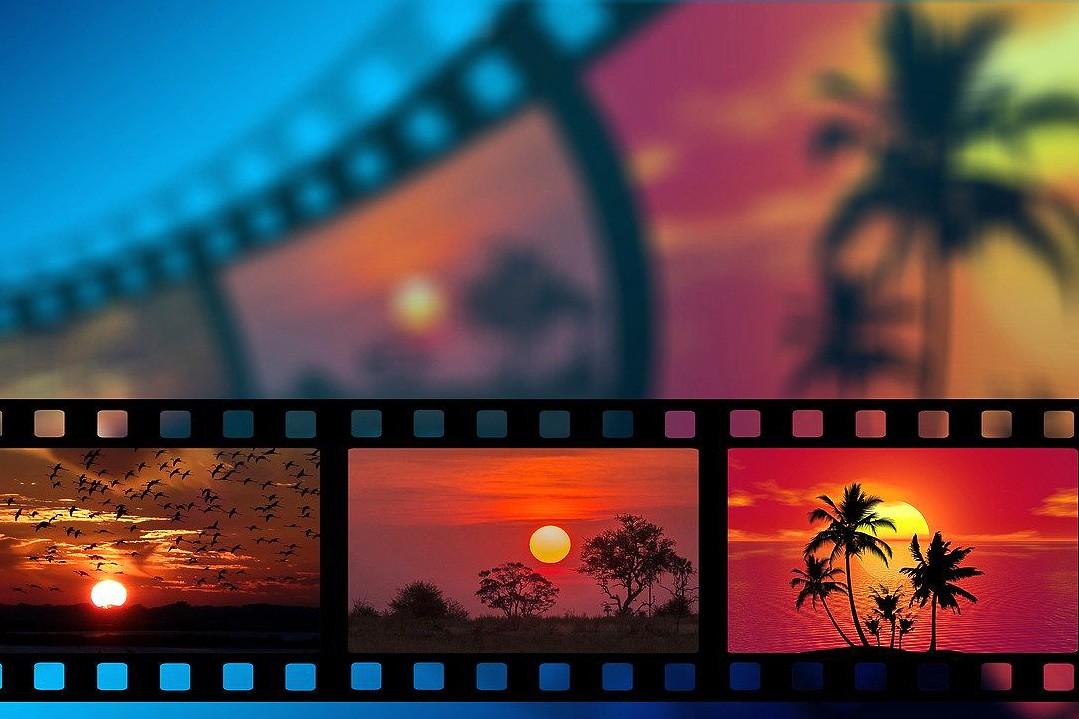 Ein Dschungel-Abendteuer für Kinder gibt es beim Kino-Nachmittag in der Velberter Bücherei zu sehen. Foto: Pixabay
