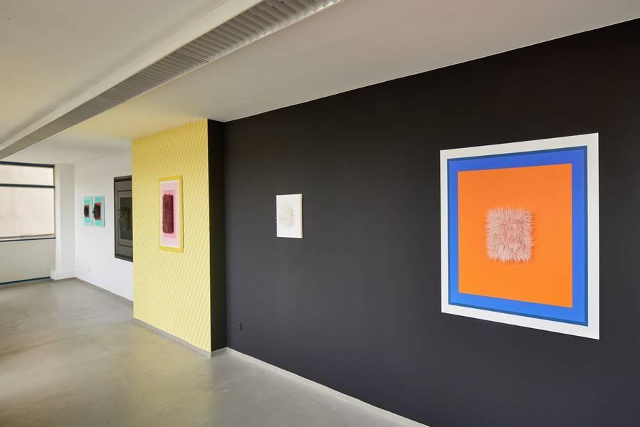 Die Werke von Anica Hauswald sind oft kontrastreich, manchmal bunt. Foto: VG Bild-Kunst Bonn 2020/Grzegorz Bieniek