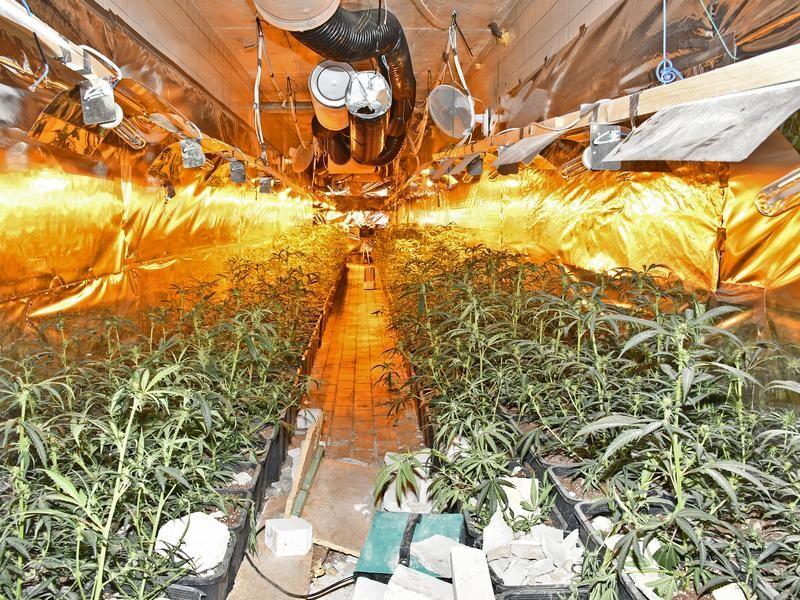 Bis in die Nacht hinein war die Polizei an der Oststraße im Einsatz - dort hatte man am Samstag eine Cannabis-Plantage entdeckt. Foto: Polizei