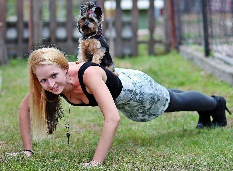 Der Bund der Steuerzahler informiert: Werden Hunde im Rahmen eines sogenannten Schulhund-Konzeptes eingesetzt, können die Kosten für das Tier teilweise bei der Steuererklärung angegeben werden. Foto: pixabay