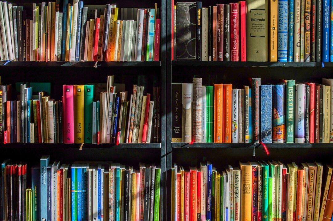 Ein Bücherregal. Bild: pixabay