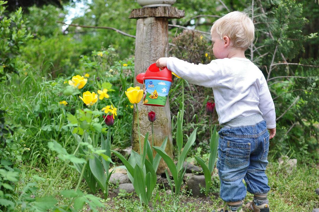 Kindergärten und andere gemeinnützige Einrichtungen können sich mit ihren Klima-Projektideen an die Schlüsselregion wenden. Symbolfoto: Pixabay