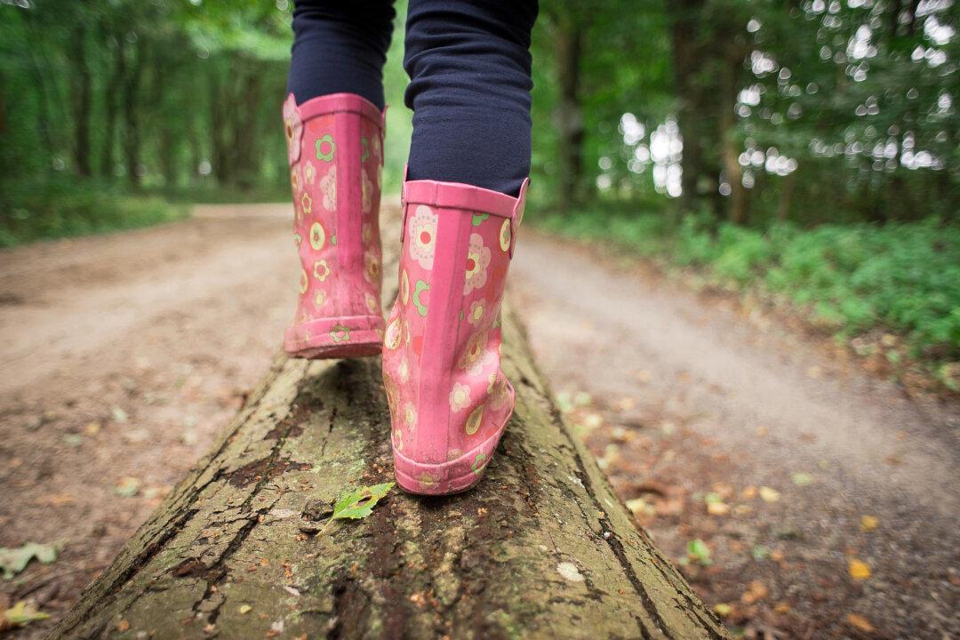 Die Kinder gehen im Wald auf Entdeckungsreise. Foto: Pixabay